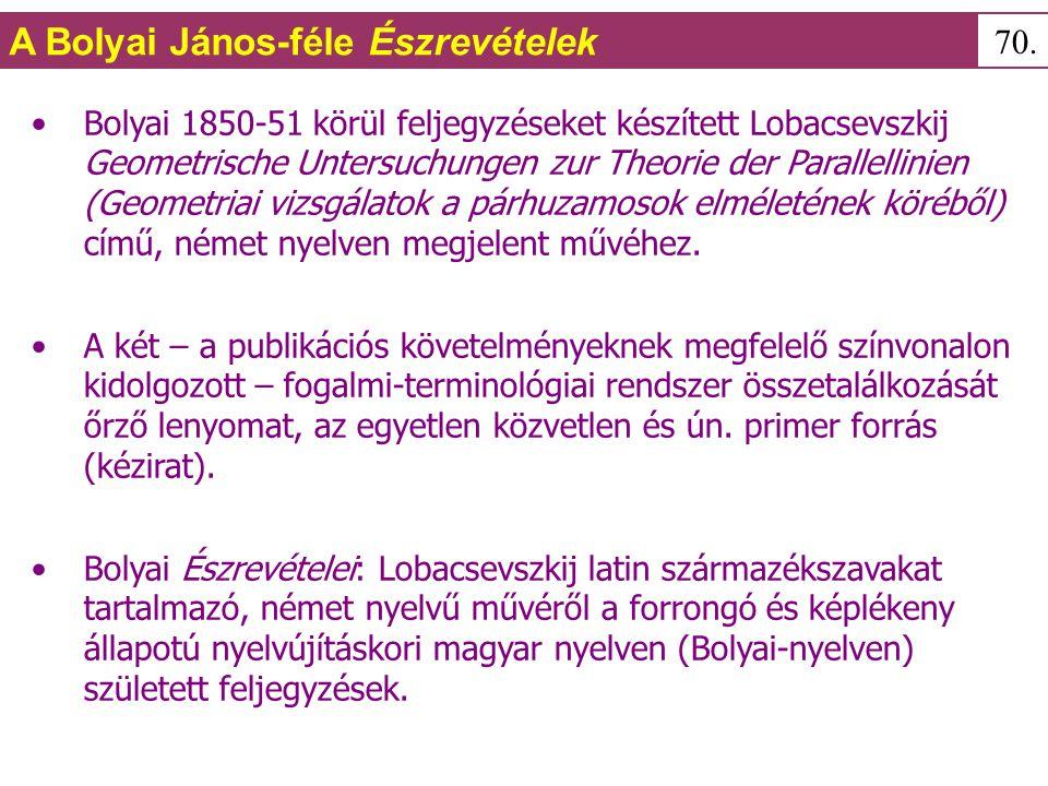 Bolyai 1850-51 körül feljegyzéseket készített Lobacsevszkij Geometrische Untersuchungen zur Theorie der Parallellinien (Geometriai vizsgálatok a párhuzamosok elméletének köréből) című, német nyelven megjelent művéhez.