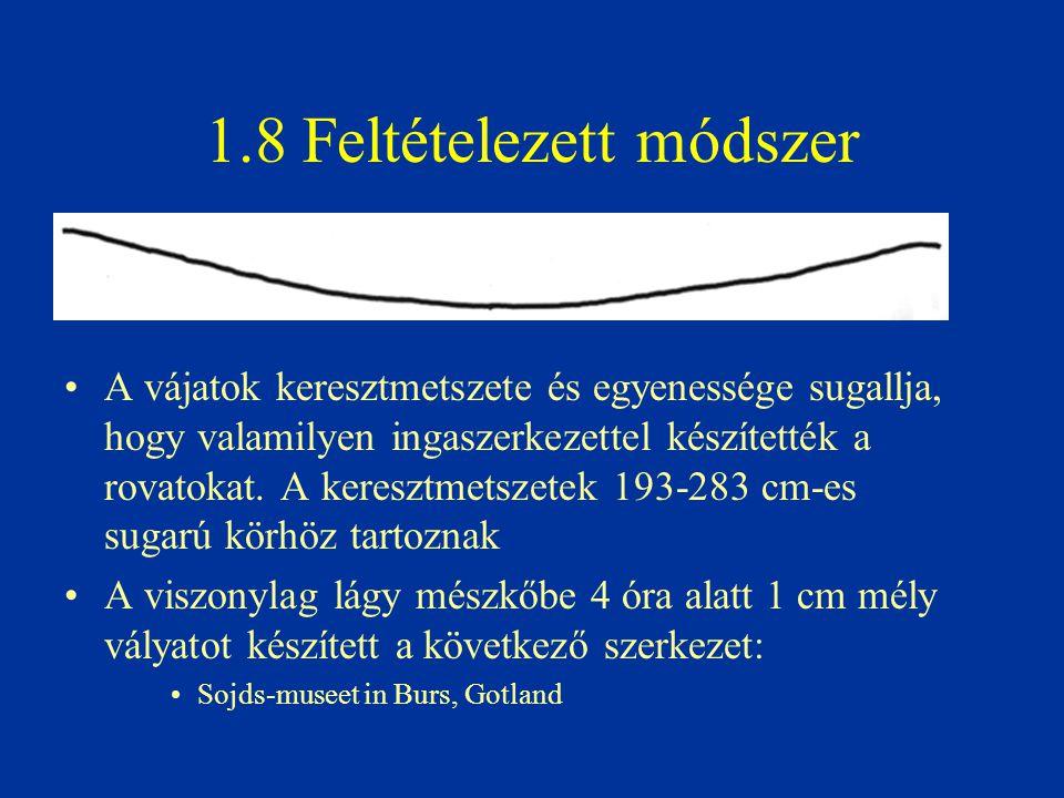 1.8 Feltételezett módszer A vájatok keresztmetszete és egyenessége sugallja, hogy valamilyen ingaszerkezettel készítették a rovatokat. A keresztmetsze