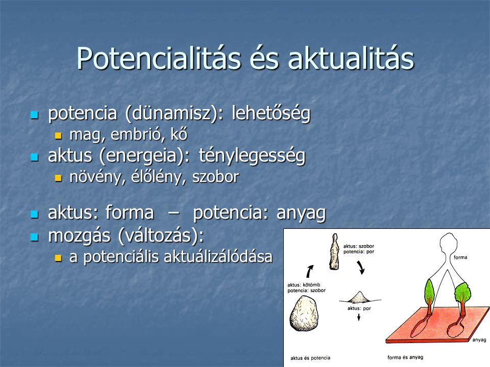 Potencialitás és aktualitás potencia (dünamisz): lehetőség potencia (dünamisz): lehetőség mag, embrió, kő mag, embrió, kő aktus (energeia): ténylegess