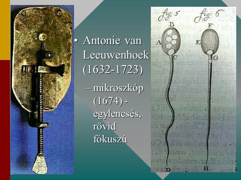 Antonie van Leeuwenhoek (1632-1723)Antonie van Leeuwenhoek (1632-1723) –mikroszkóp (1674) - egylencsés, rövid fókuszú
