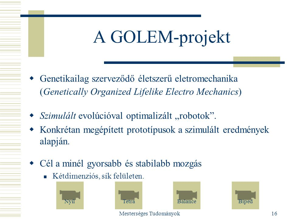 Mesterséges Tudományok16 A GOLEM-projekt  Genetikailag szerveződő életszerű eletromechanika (Genetically Organized Lifelike Electro Mechanics)  Szim