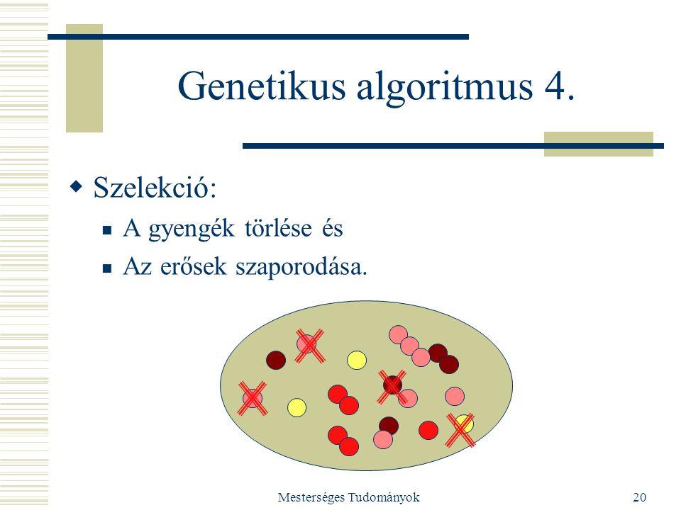Mesterséges Tudományok20 Genetikus algoritmus 4.  Szelekció: A gyengék törlése és Az erősek szaporodása.
