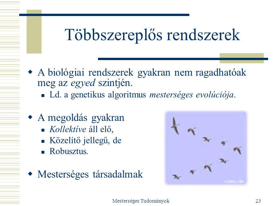Mesterséges Tudományok23 Többszereplős rendszerek  A biológiai rendszerek gyakran nem ragadhatóak meg az egyed szintjén. Ld. a genetikus algoritmus m