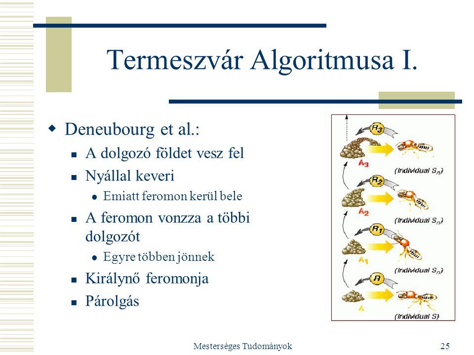 Mesterséges Tudományok25 Termeszvár Algoritmusa I.  Deneubourg et al.: A dolgozó földet vesz fel Nyállal keveri Emiatt feromon kerül bele A feromon v