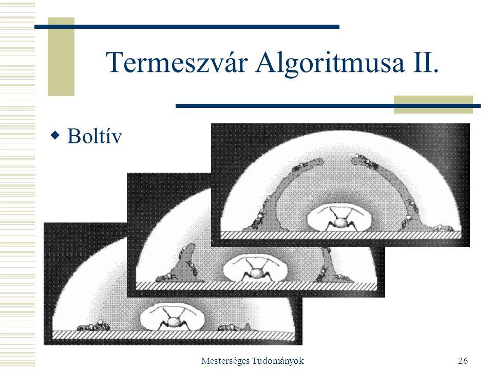 Mesterséges Tudományok26 Termeszvár Algoritmusa II.  Boltív