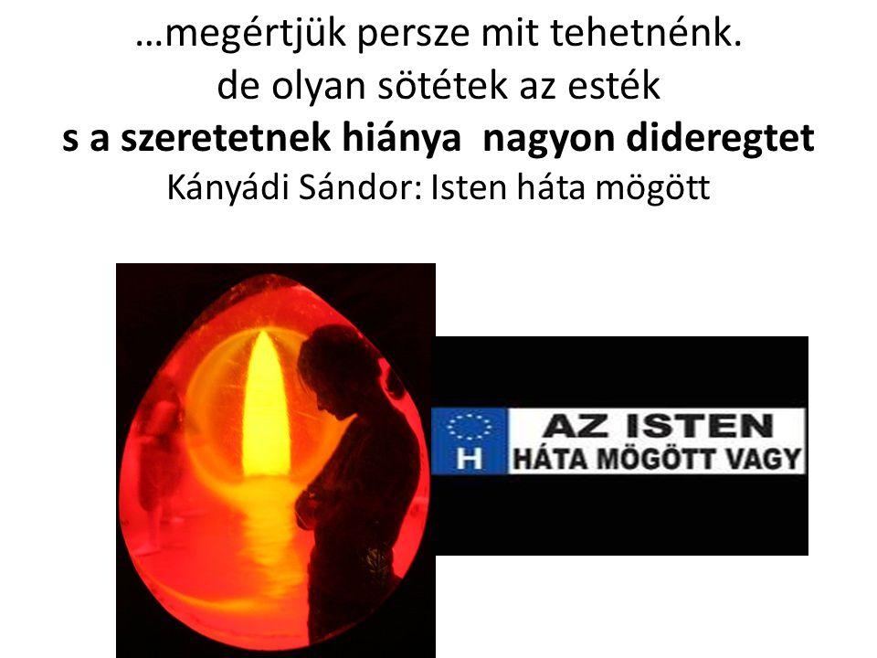 …megértjük persze mit tehetnénk. de olyan sötétek az esték s a szeretetnek hiánya nagyon dideregtet Kányádi Sándor: Isten háta mögött
