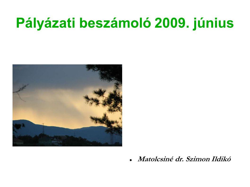 Pályázati beszámoló 2009. június Matolcsiné dr. Szimon Ildikó