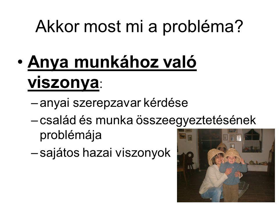 Mi a családi napközi.1997. Évi XXXI.