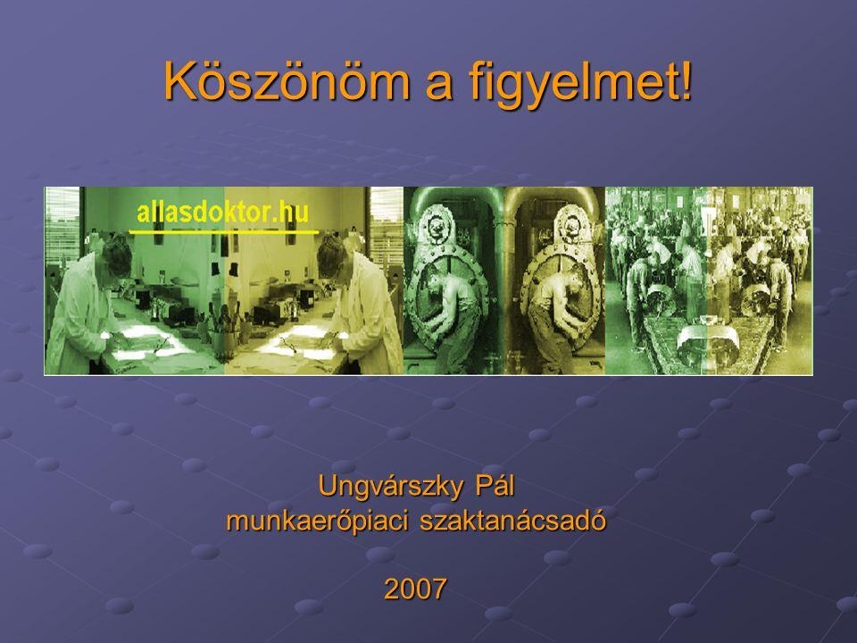 Köszönöm a figyelmet! Ungvárszky Pál munkaerőpiaci szaktanácsadó 2007