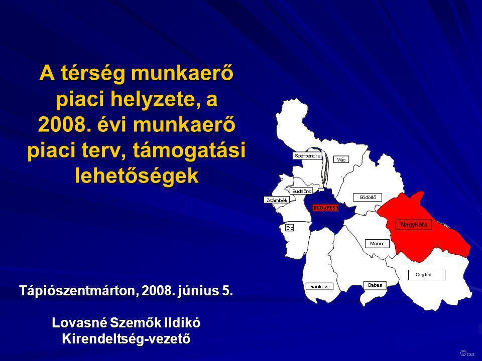 A térség munkaerő piaci helyzete, a 2008. évi munkaerő piaci terv, támogatási lehetőségek Tápiószentmárton, 2008. június 5. Lovasné Szemők Ildikó Kire