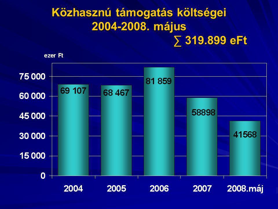Közhasznú támogatás költségei 2004-2008. május ∑ 319.899 eFt