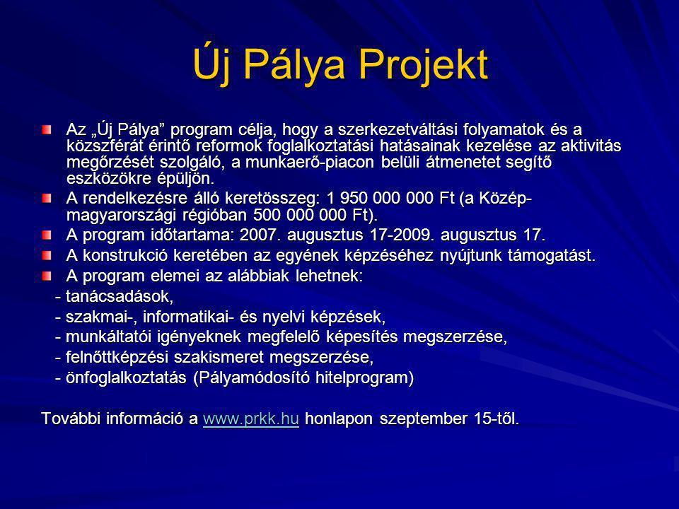 """Új Pálya Projekt Az """"Új Pálya program célja, hogy a szerkezetváltási folyamatok és a közszférát érintő reformok foglalkoztatási hatásainak kezelése az aktivitás megőrzését szolgáló, a munkaerő-piacon belüli átmenetet segítő eszközökre épüljön."""