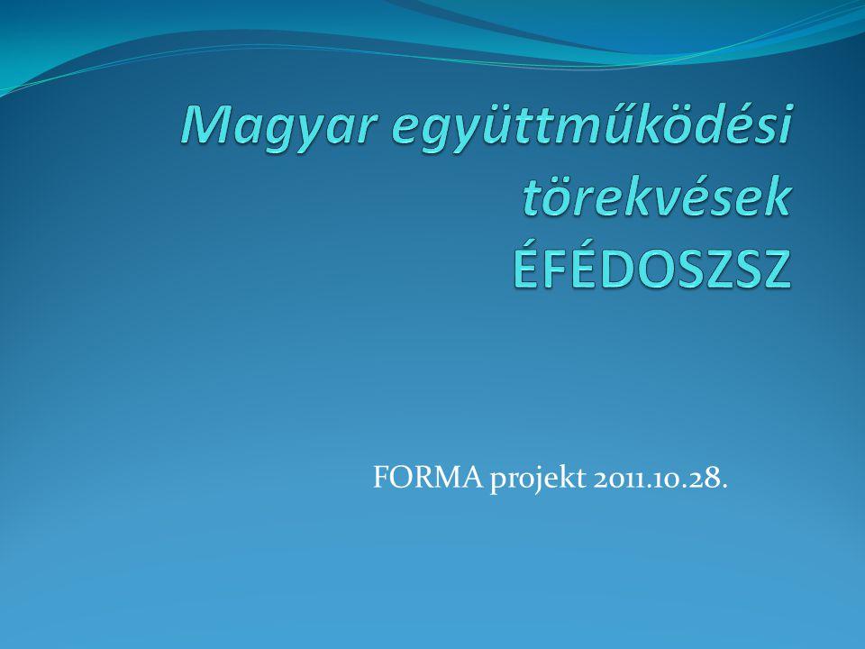 FORMA projekt 2011.10.28.