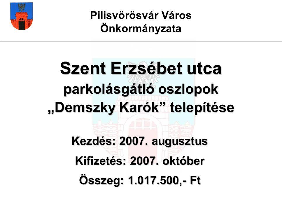 """Pilisvörösvár Város Önkormányzata Szent Erzsébet utca parkolásgátló oszlopok """"Demszky Karók telepítése Kezdés: 2007."""