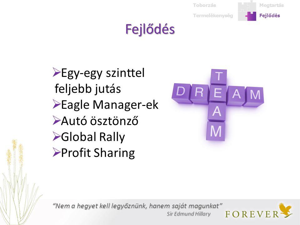 Fejlődés  Egy-egy szinttel feljebb jutás  Eagle Manager-ek  Autó ösztönző  Global Rally  Profit Sharing Nem a hegyet kell legyőznünk, hanem saját magunkat Sir Edmund Hillary Sir Edmund Hillary Termelékenység Megtartás Fejlődés Toborzás