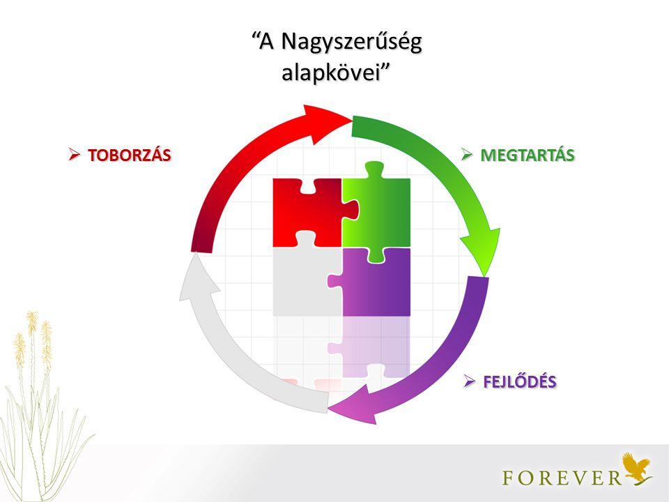  TOBORZÁS  MEGTARTÁS  FEJLŐDÉS A Nagyszerűség alapkövei