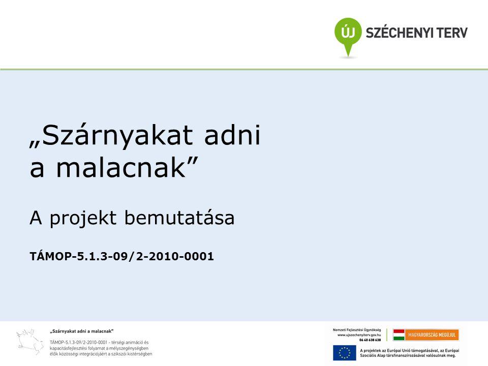 """""""Szárnyakat adni a malacnak A projekt bemutatása TÁMOP-5.1.3-09/2-2010-0001"""