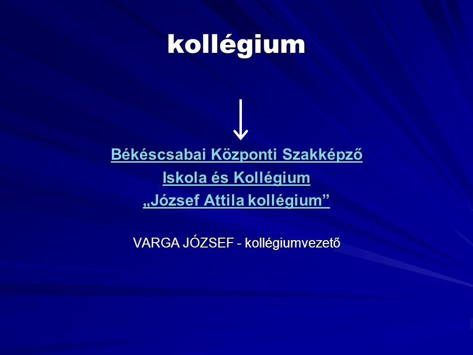 """kollégium Békéscsabai Központi Szakképző Iskola és Kollégium """"József Attila kollégium"""" VARGA JÓZSEF - kollégiumvezető"""