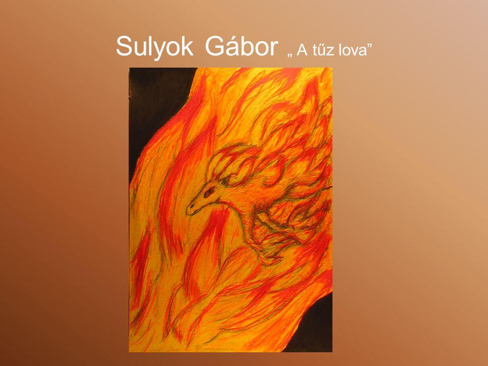 """Sulyok Gábor """" A tűz lova"""