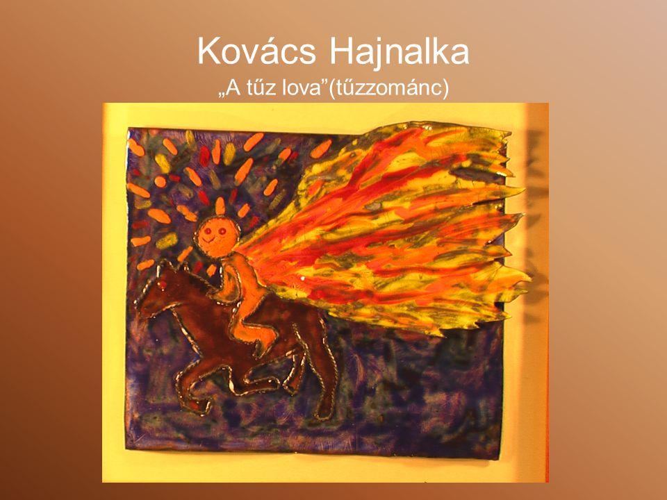 "Kovács Hajnalka ""A tűz lova (tűzzománc)"