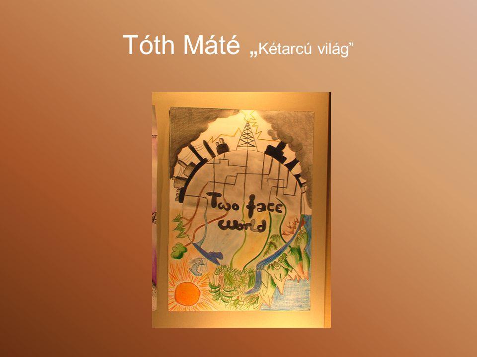 """Tóth Máté """" Kétarcú világ"""