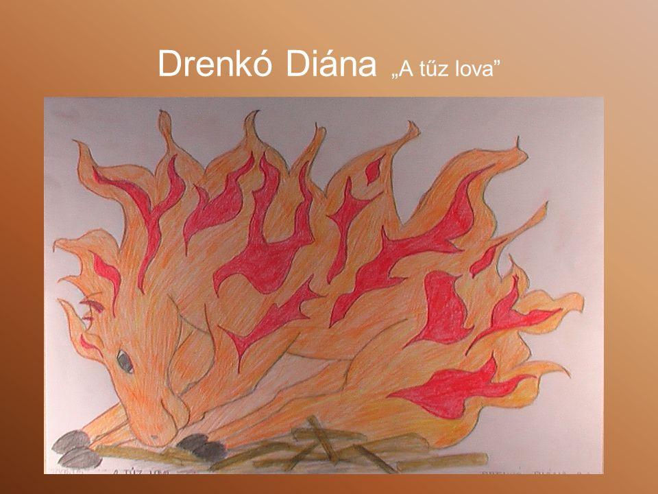"Drenkó Diána ""A tűz lova"