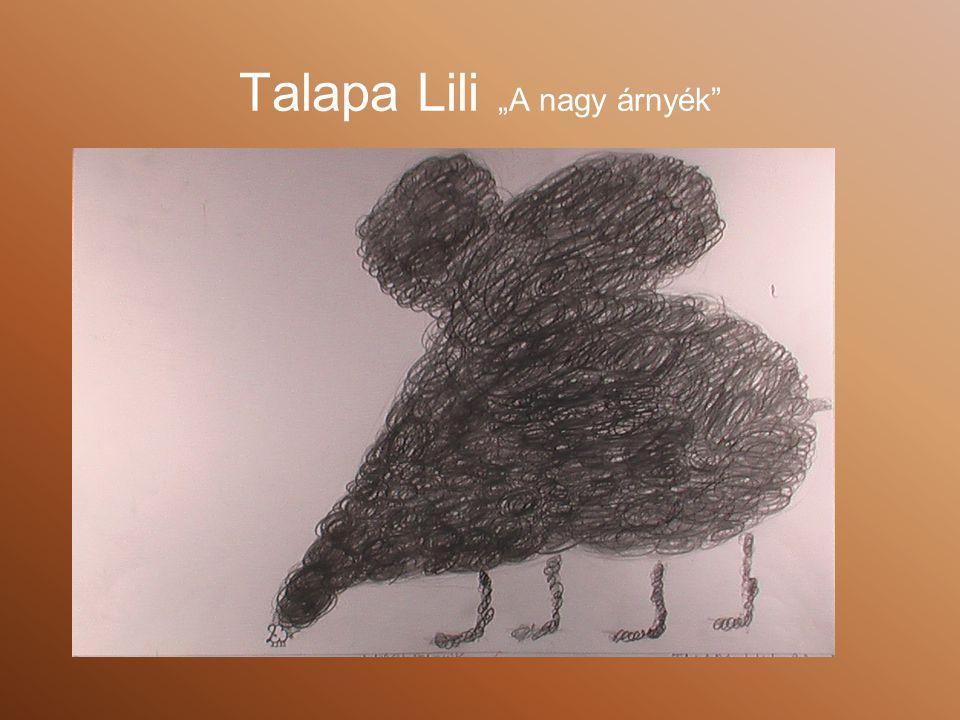 """Talapa Lili """"A nagy árnyék"""