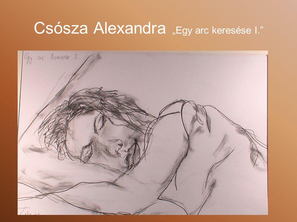 """Csósza Alexandra """"Egy arc keresése I."""