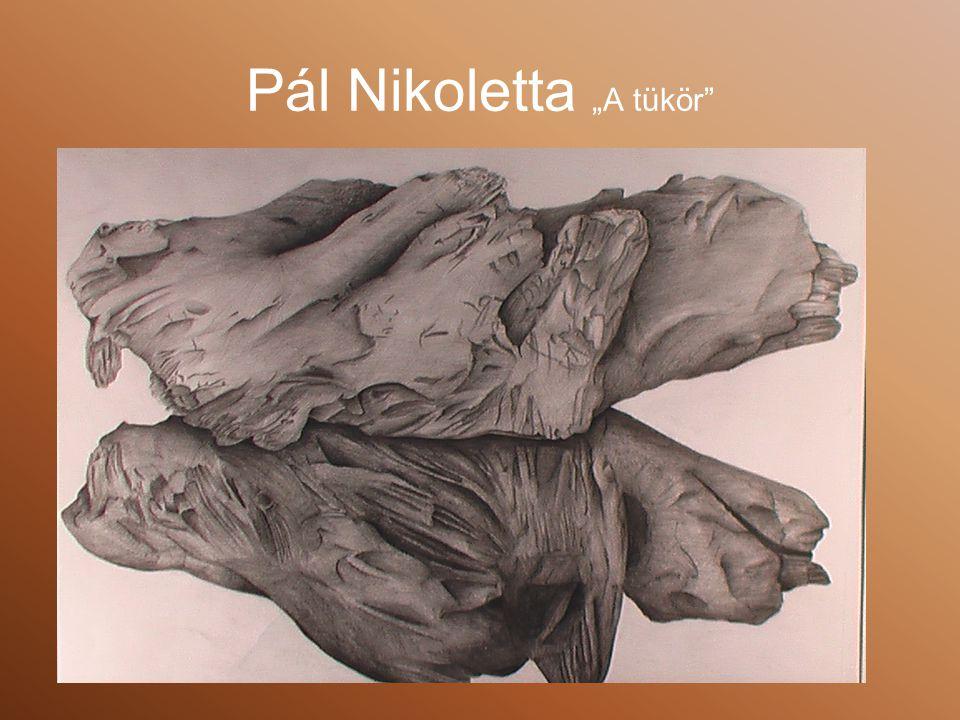 """Pál Nikoletta """"A tükör"""