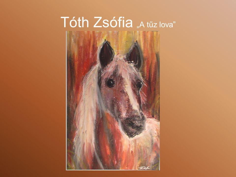 """Tóth Zsófia """"A tűz lova"""