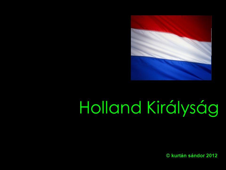 A holland politikai rendszer alapvonásai Uralkodó 1.Kamara (75 fő) (4 évre) 2.