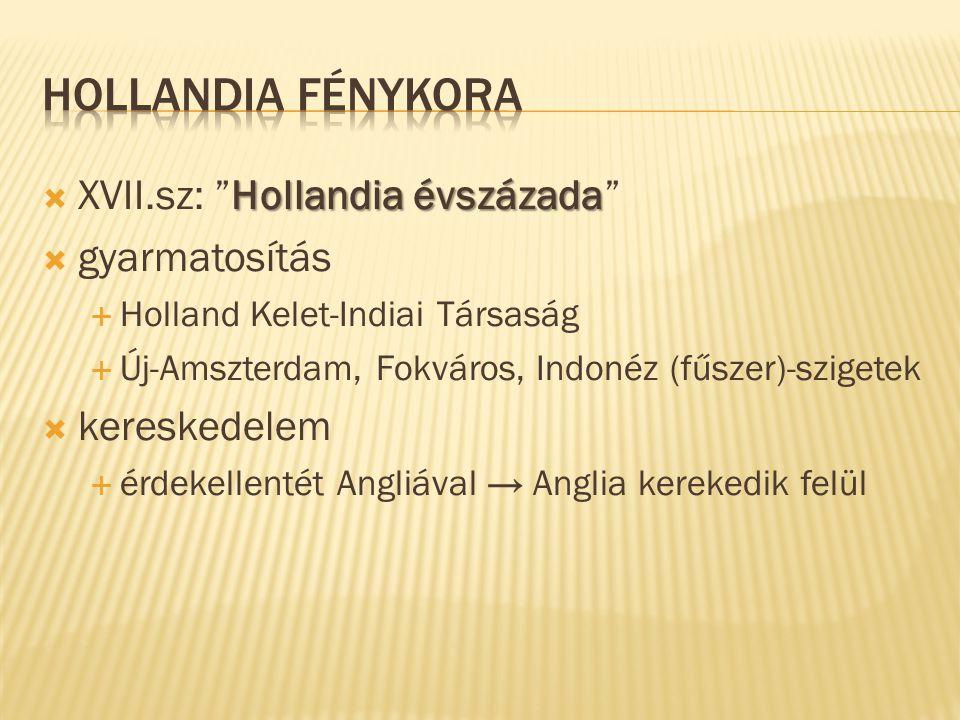 """Hollandia évszázada  XVII.sz: """"Hollandia évszázada""""  gyarmatosítás  Holland Kelet-Indiai Társaság  Új-Amszterdam, Fokváros, Indonéz (fűszer)-szige"""