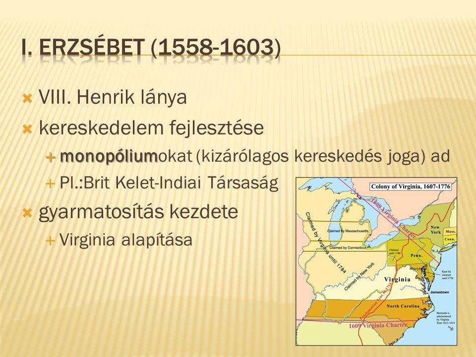  VIII. Henrik lánya  kereskedelem fejlesztése  monopólium  monopóliumokat (kizárólagos kereskedés joga) ad  Pl.:Brit Kelet-Indiai Társaság  gyar