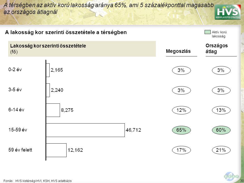 30 Forrás:HVS kistérségi HVI, KSH, HVS adatbázis A lakosság kor szerinti összetétele a térségben A térségben az aktív korú lakosság aránya 65%, ami 5 százalékponttal magasabb az országos átlagnál Lakosság kor szerinti összetétele (fő) Megoszlás 3% 65% 17% 12% Országos átlag 3% 60% 21% 13% Aktív korú lakosság 0-2 év 3-5 év 6-14 év 15-59 év 59 év felett