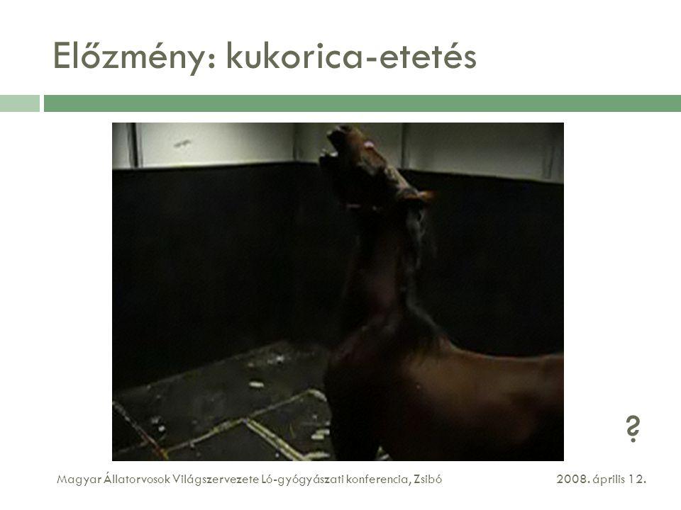 Előzmény: kukorica-etetés 2008. április 12.Magyar Állatorvosok Világszervezete Ló-gyógyászati konferencia, Zsibó ?