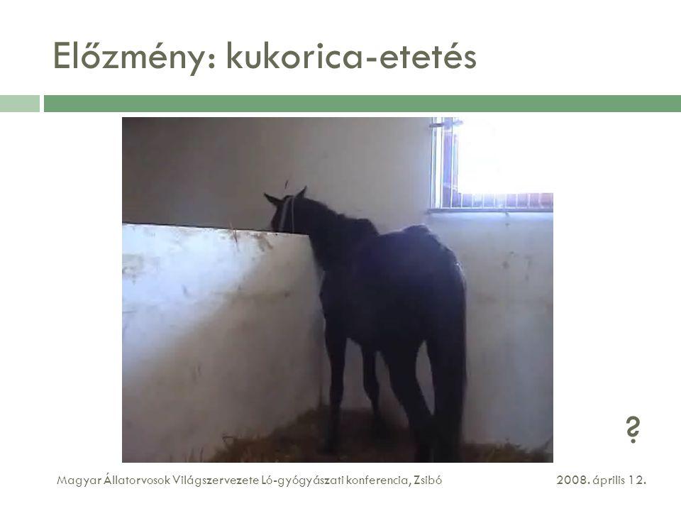 Előzmény: kukorica-etetés 2008.