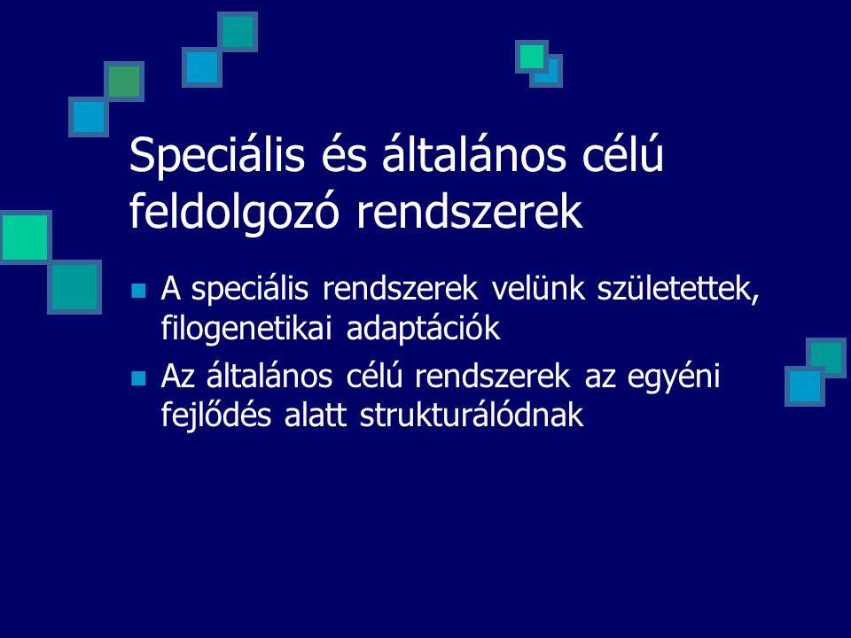 Speciális és általános célú feldolgozó rendszerek A speciális rendszerek velünk születettek, filogenetikai adaptációk Az általános célú rendszerek az egyéni fejlődés alatt strukturálódnak