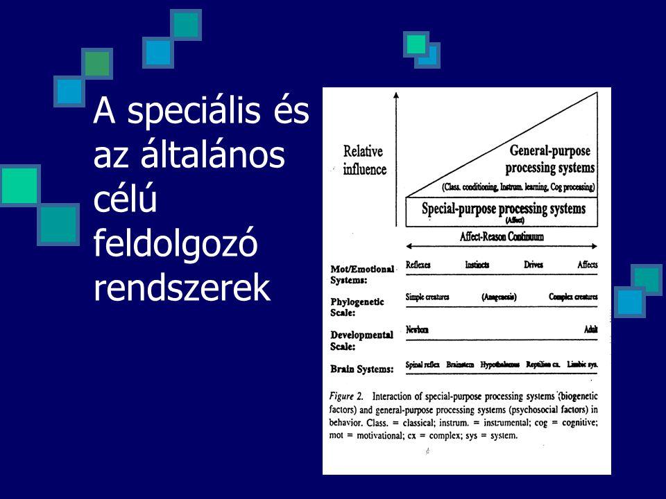 A speciális és az általános célú feldolgozó rendszerek