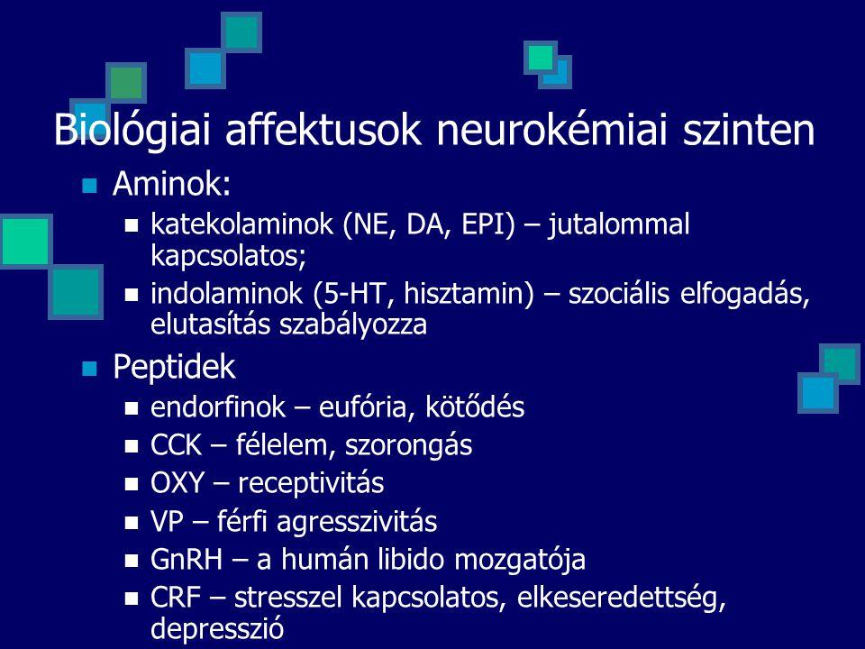 Biológiai affektusok neurokémiai szinten Aminok: katekolaminok (NE, DA, EPI) – jutalommal kapcsolatos; indolaminok (5-HT, hisztamin) – szociális elfogadás, elutasítás szabályozza Peptidek endorfinok – eufória, kötődés CCK – félelem, szorongás OXY – receptivitás VP – férfi agresszivitás GnRH – a humán libido mozgatója CRF – stresszel kapcsolatos, elkeseredettség, depresszió