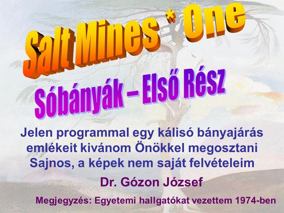 Jelen programmal egy kálisó bányajárás emlékeit kivánom Önökkel megosztani Sajnos, a képek nem saját felvételeim Dr. Gózon József Megjegyzés: Egyetemi