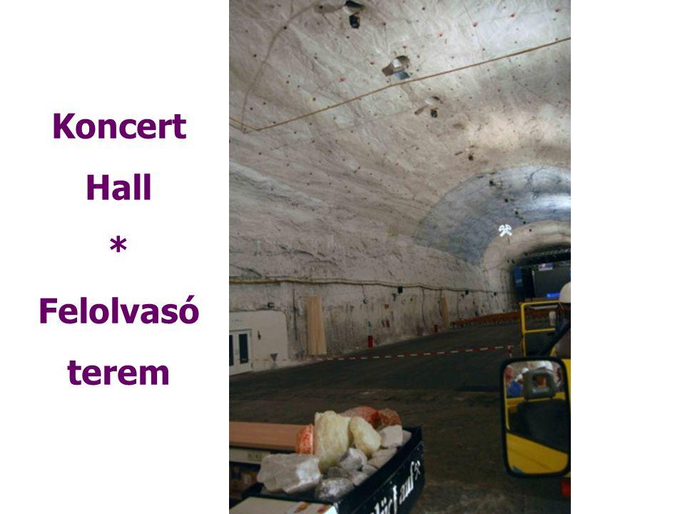 Koncert Hall * Felolvasó terem