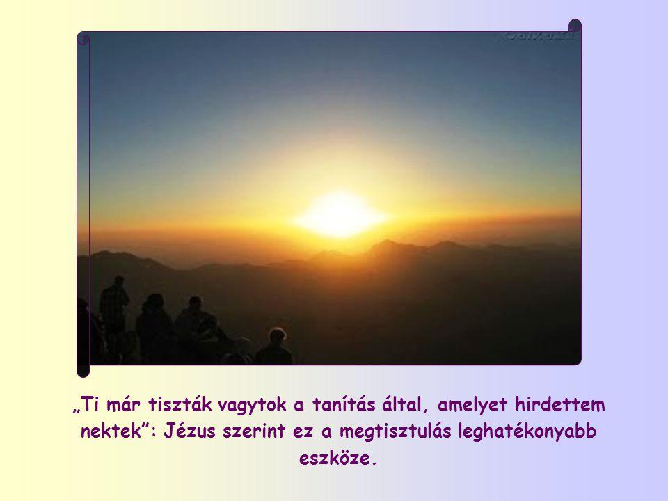 """""""Boldogok a tisztaszívűek, mert meglátják az Istent."""