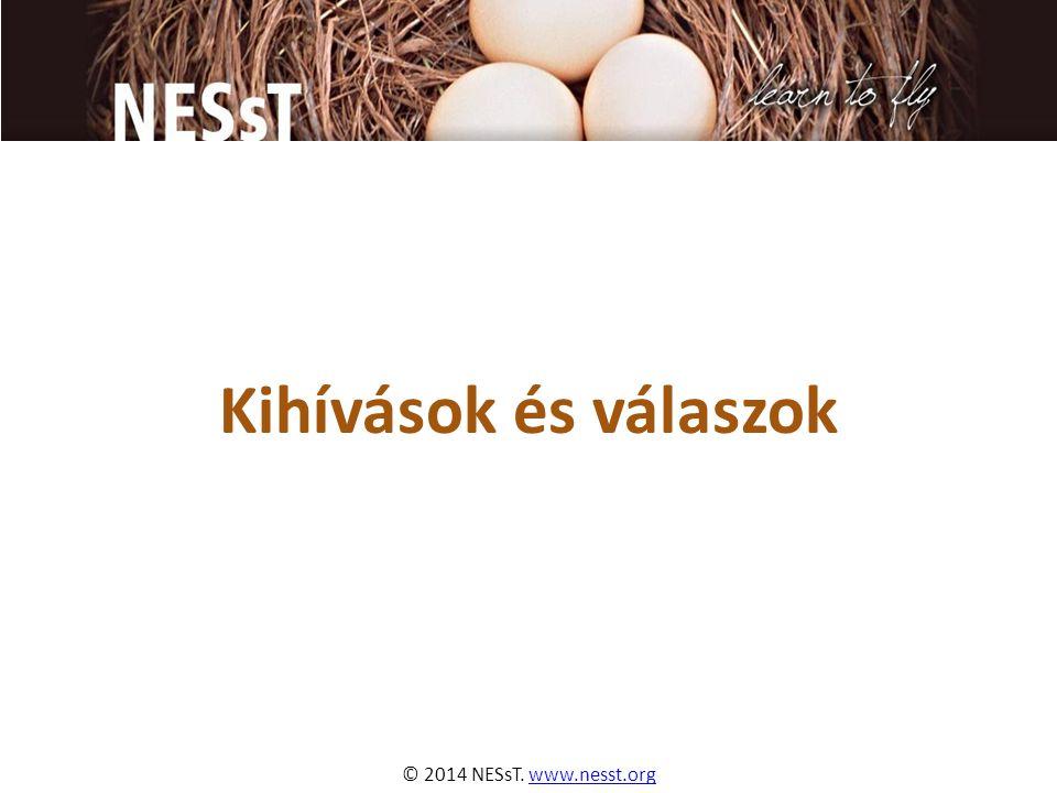 © 2014 NESsT. www.nesst.orgwww.nesst.org Kihívások és válaszok