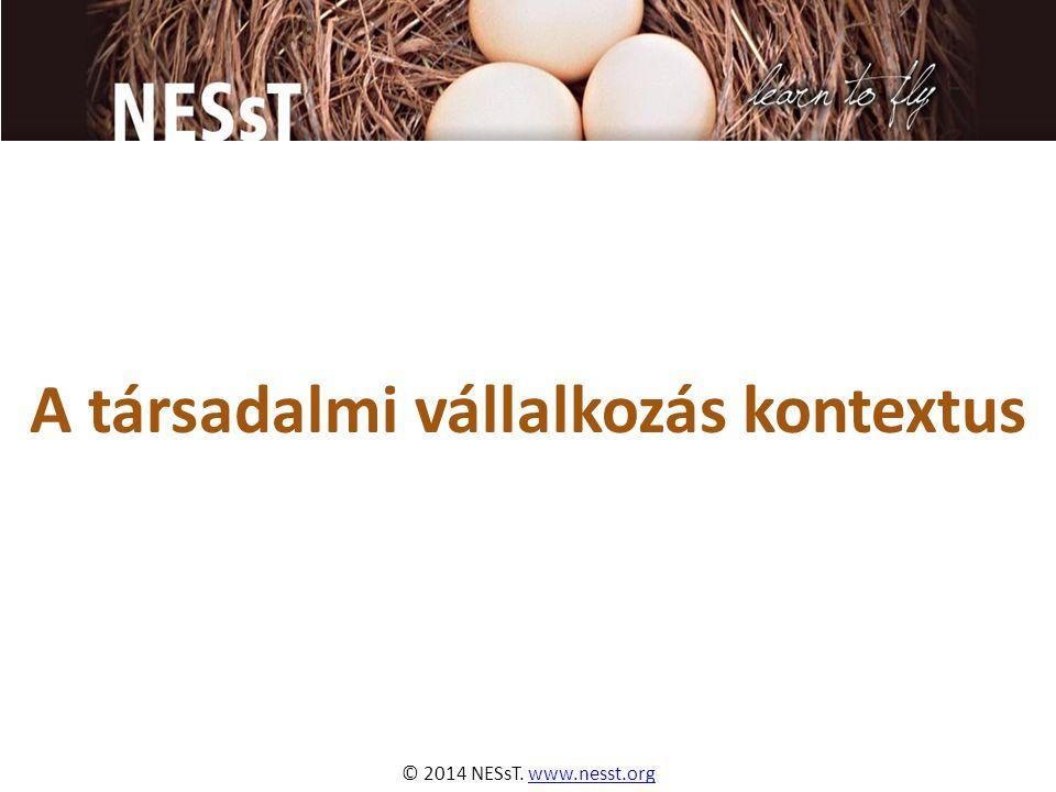 © 2014 NESsT. www.nesst.orgwww.nesst.org A társadalmi vállalkozás kontextus