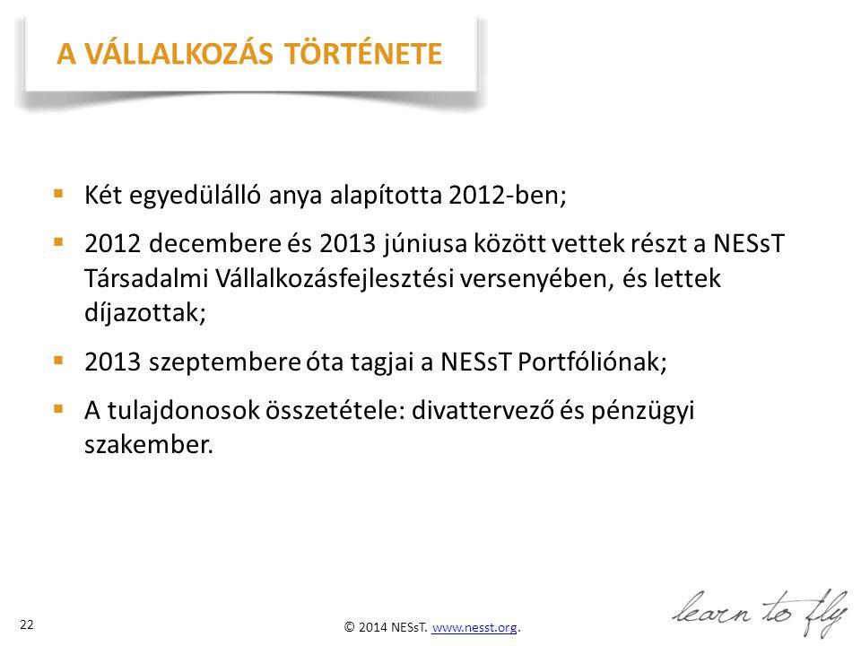 © 2014 NESsT.