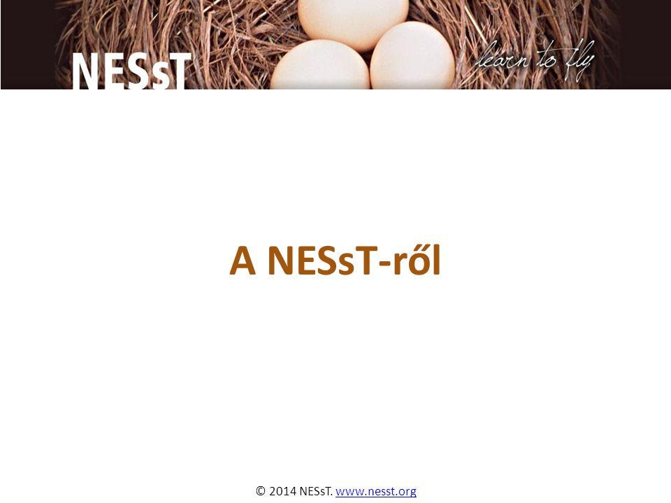 © 2014 NESsT. www.nesst.orgwww.nesst.org A NESsT-ről