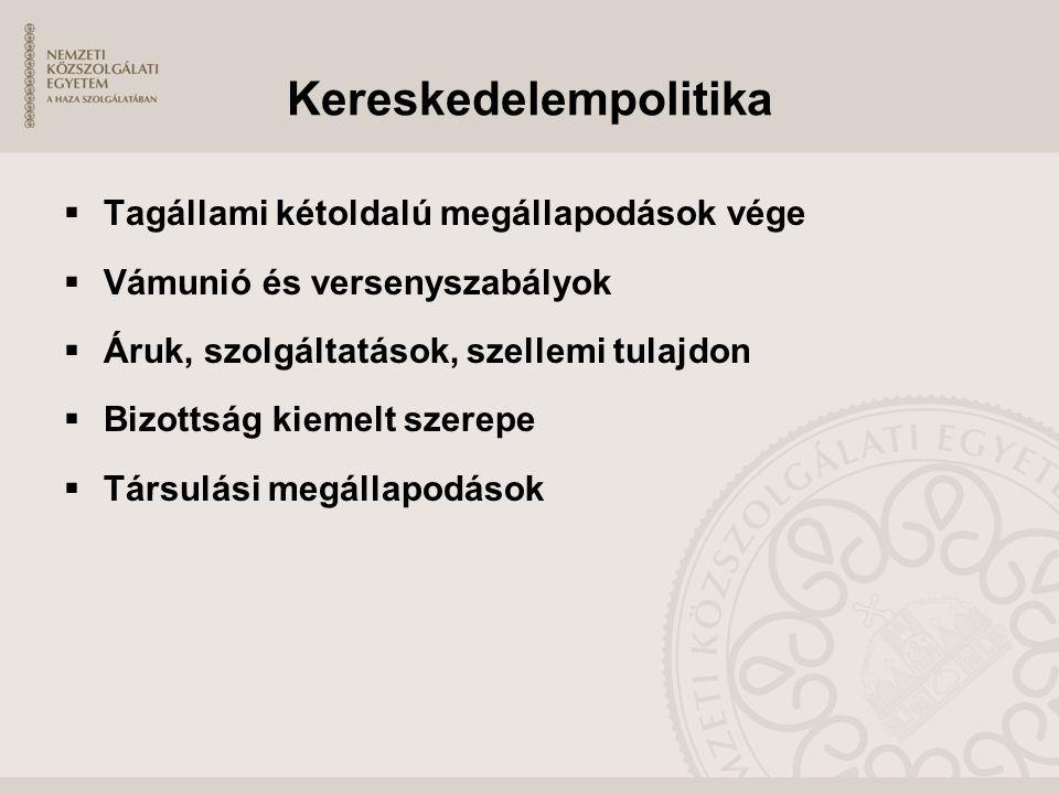 Kereskedelempolitika  Tagállami kétoldalú megállapodások vége  Vámunió és versenyszabályok  Áruk, szolgáltatások, szellemi tulajdon  Bizottság kie