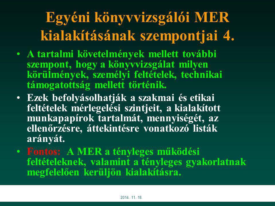 2014.11. 18. Egyéni könyvvizsgálói MER kialakításának szempontjai 4.