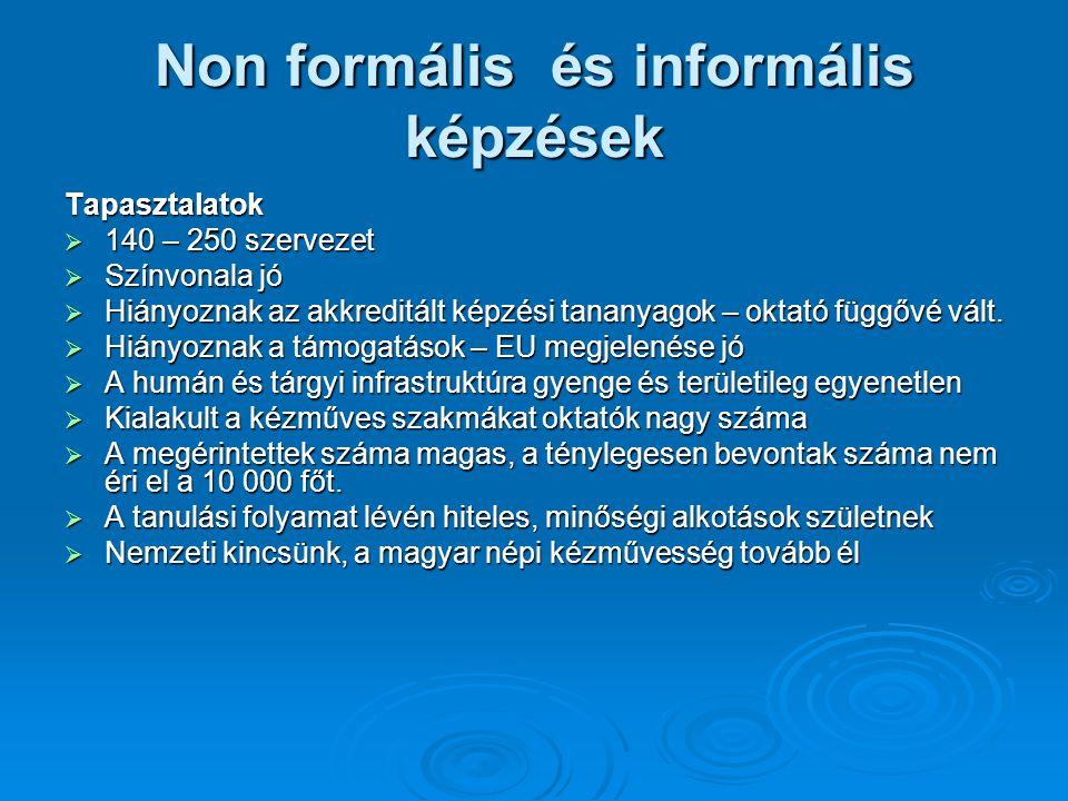Non formális és informális képzések Tapasztalatok  140 – 250 szervezet  Színvonala jó  Hiányoznak az akkreditált képzési tananyagok – oktató függőv