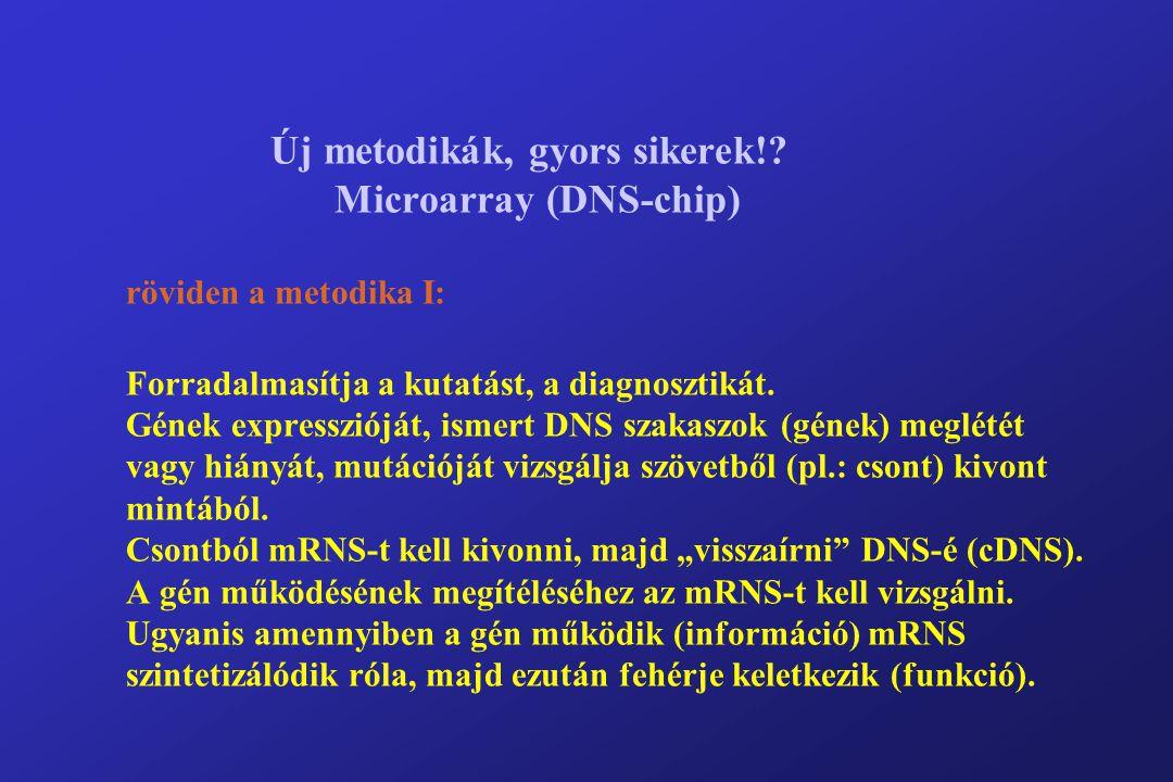 Új metodikák, gyors sikerek!.